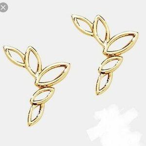 MWT - Crepe earrings by Park Lane Jewelry